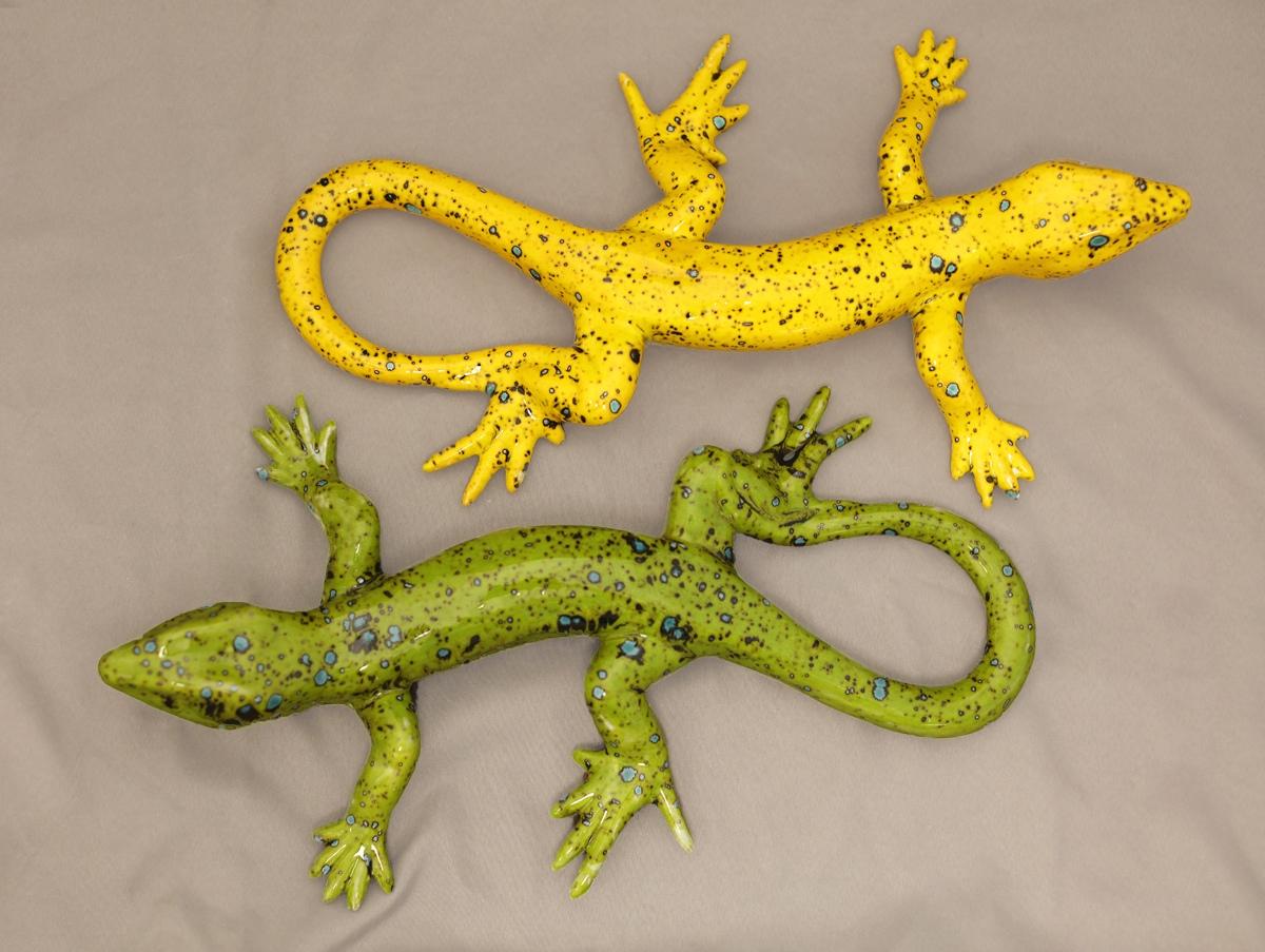 Lizard M